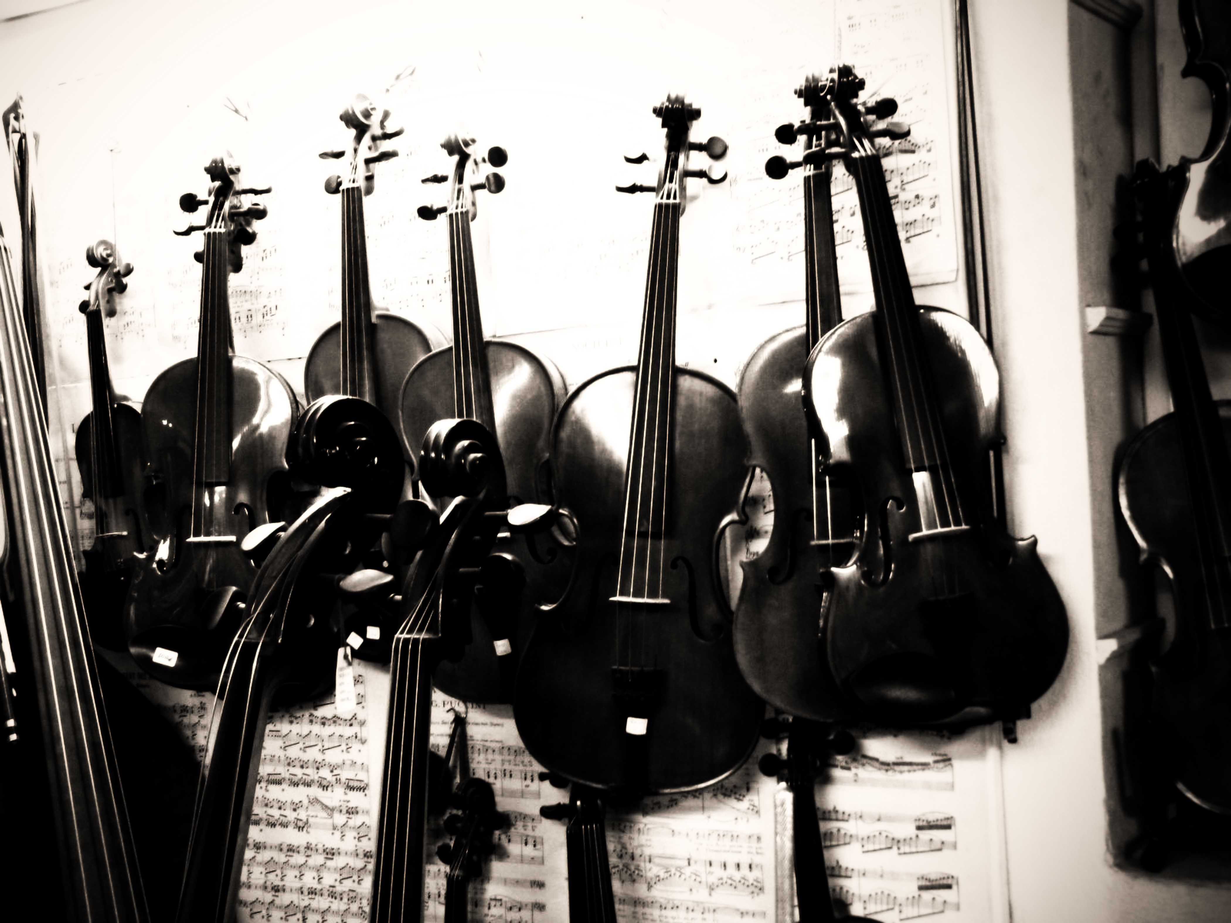 Violins in Athens, Greece